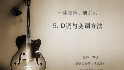 不休吉他手册-5.D调与变调方法0000